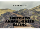 animal-based eating