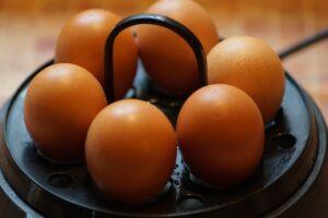 hard-boiled egg for a snack